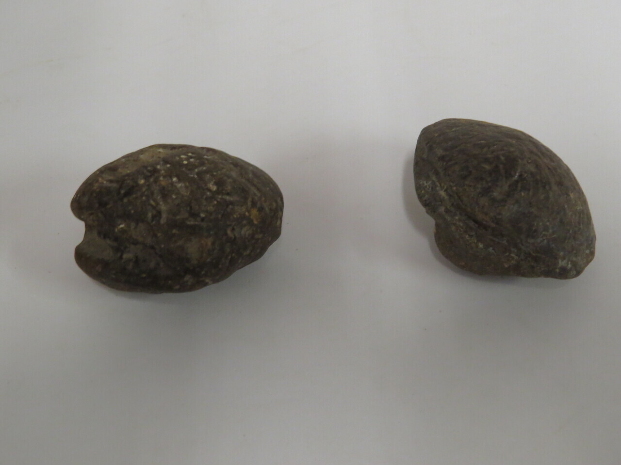 Lote: 21 - Lote: 21 - Lote compuesto por fichas de estancia y 2 piedras de ondas
